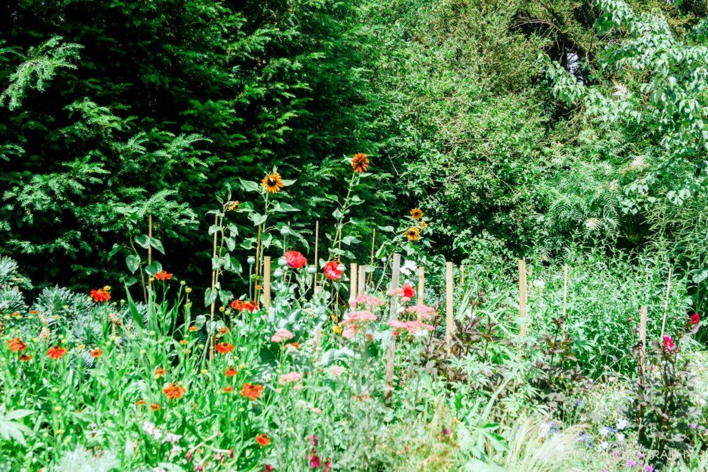 """""""Christs College flower garden"""""""
